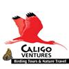 Caligo Ventures