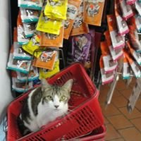 Cross Bronx Pet Shop
