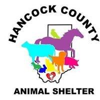 Hancock County Animal Shelter, MS
