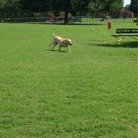 Biscuit Acres Dog Park!