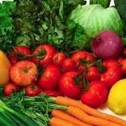 Offgrid Organic FARM