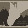 Equilibre - Wild Equus