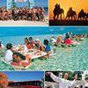BSA tourism