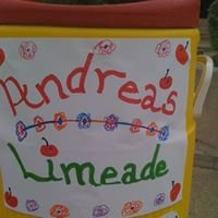 Andrea's Limeade Picnic in the Park