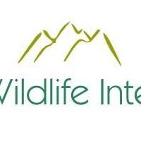 Wildlife Intel