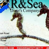 R & Sea Divers, Tobago