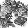 The Village Herbalist