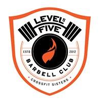 Level 5 CrossFit Sisters