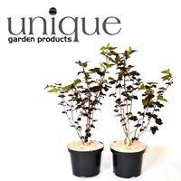 Unique Garden Products