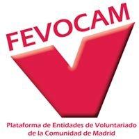Fevocam