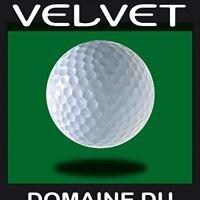 Green Velvet - Domaine du Mont d'Arbois 2011