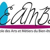 Ecole des arts et Métiers du Bien-être