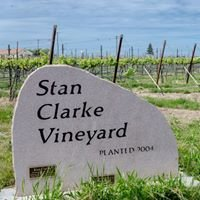 Stan Clarke Vineyard
