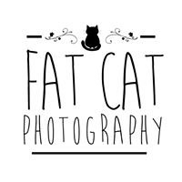 Fat Cat Photography