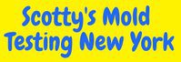 Scotty's Mold Testing New York