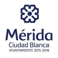 Mérida Joven