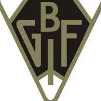 Bollnäs GIF Fotboll