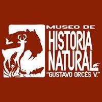 """Museo de Historia Natural """"Gustavo Orcés V""""."""