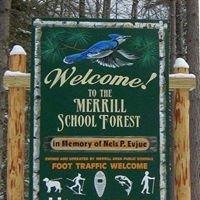 Merrill School Forest