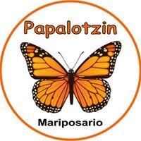Papalotzin