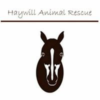 Haywill Animal Rescue