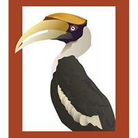 JungleWalla Tours - Natural History