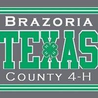 Brazoria County 4-H