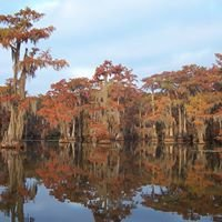 Greater Caddo Lake Association of Texas