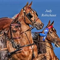 Judy Robichaux Photography