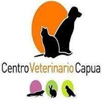 Centro Veterinario Capua S.L.