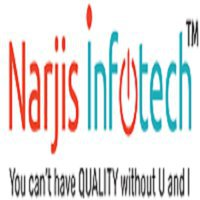 Narjis Infotech - Best IT Service Company in India