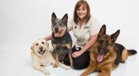 Dogsession Behaviour & Training