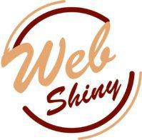WebShiny | Best Digital Marketing Company In Amritsar, Top Digital Marketing, SEO, SMM agency