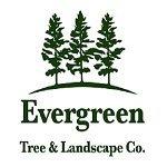 Evergreen Tree & Landscaping Company