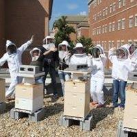 VanEngelsdorp Bee Lab