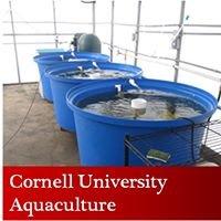Cornell University Aquaculture & Multiponics