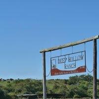 Deep Hollow Ranch Beach & Trail Rides