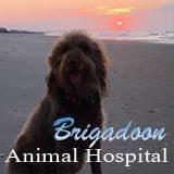 Brigadoon Animal Hospital
