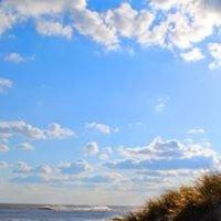 Southampton Arts - Semester by the Sea
