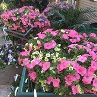 Bloomin Haus Nursery