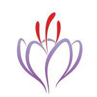 Saffron Laser Aesthetics and Medical Spa