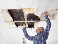 Broward Mold Testing Services