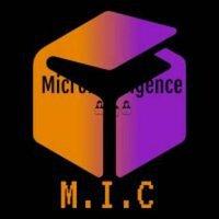 Microintelligence pvt ltd.