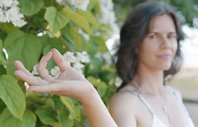 BE Bliss Yoga & Wellness - Ayurveda - Yoga - Science