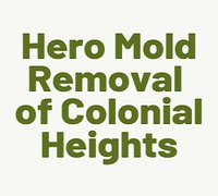 Hero Mold Removal of Colonial Heights