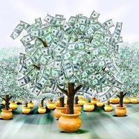 Orchard Lending