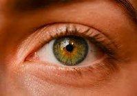 The Best Optometrists in Richmond- Harmony Eye Care