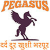 Pegasus Institute of Pain Management and Sports Injury