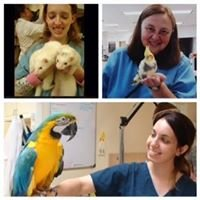 Avian and Exotic Pet Clinic of Roanoke