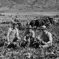 Utah Valley Historical Society